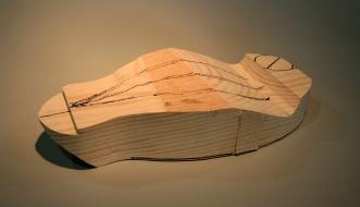 "13. Mark ""ridges"" along wings and ""shoulders"" (scapulars)."