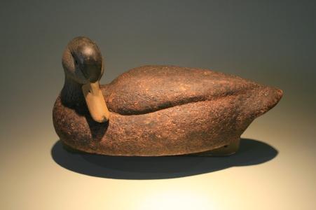 Black Duck - cork - lightened