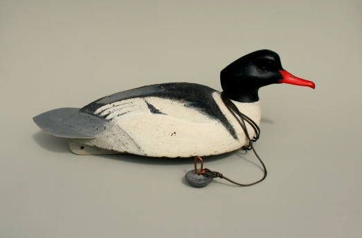 Cork Common Merganser Drake