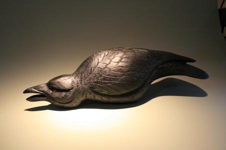 Crow - spotlight