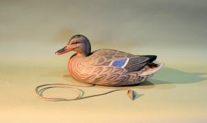 EAllen Mallard Hen