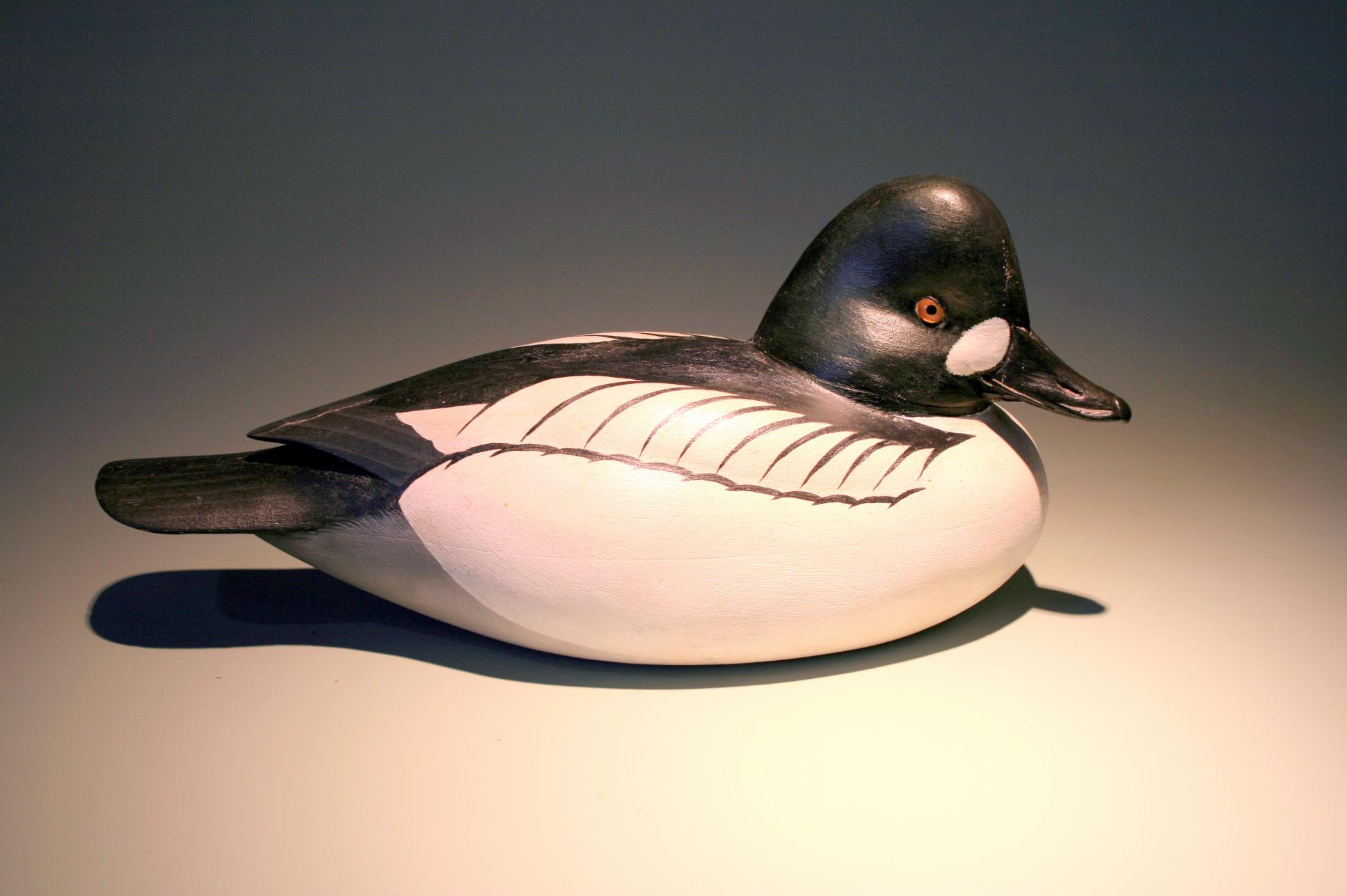 ff21d1bd Goldeneye & Cork Black Duck Goldeneye = 1983 - adjsted