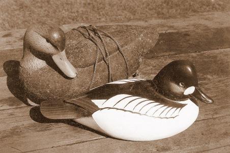 Goldeneye & Cork Black Duck