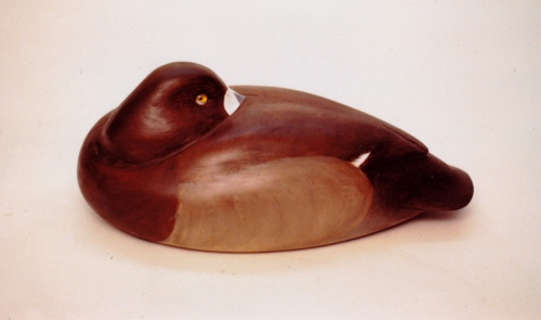 MacMillan Broadbill Hen - circa 1986