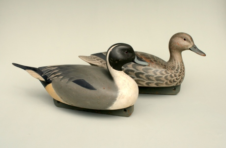 Pintail Pair - Gunners