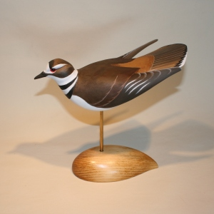 S J Sanford - Killdeer