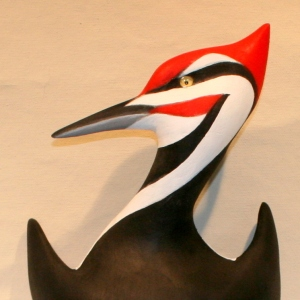 S J Sanford - Pileated Woodpecker - closeup