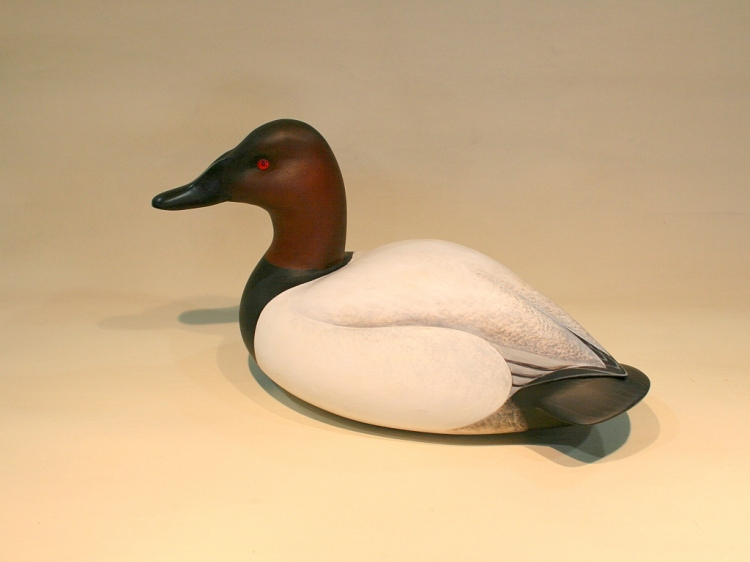 Tribou Canvasback - 28 January 2013