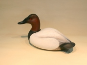 Decoys & Carvings - Canvasback