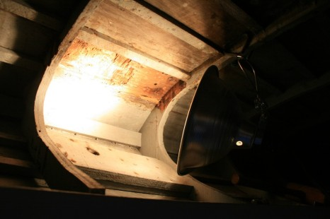 10 - I used a floodlight to warm and dry the rotted areas overnight.