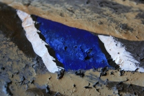 """The speculum - which usually shows more on Hens than Drakes - is done with 2 shades of Ultramarine Blue - and some detail on the Black and White""""bars""""."""