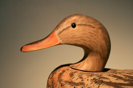 6 - This looks a lot like a hen Mallard because - just like the drakes - the Gadwall's steep crown is missing from the carving.