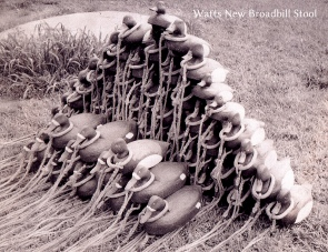 4 W9 Watts 1 - new decoys 1961