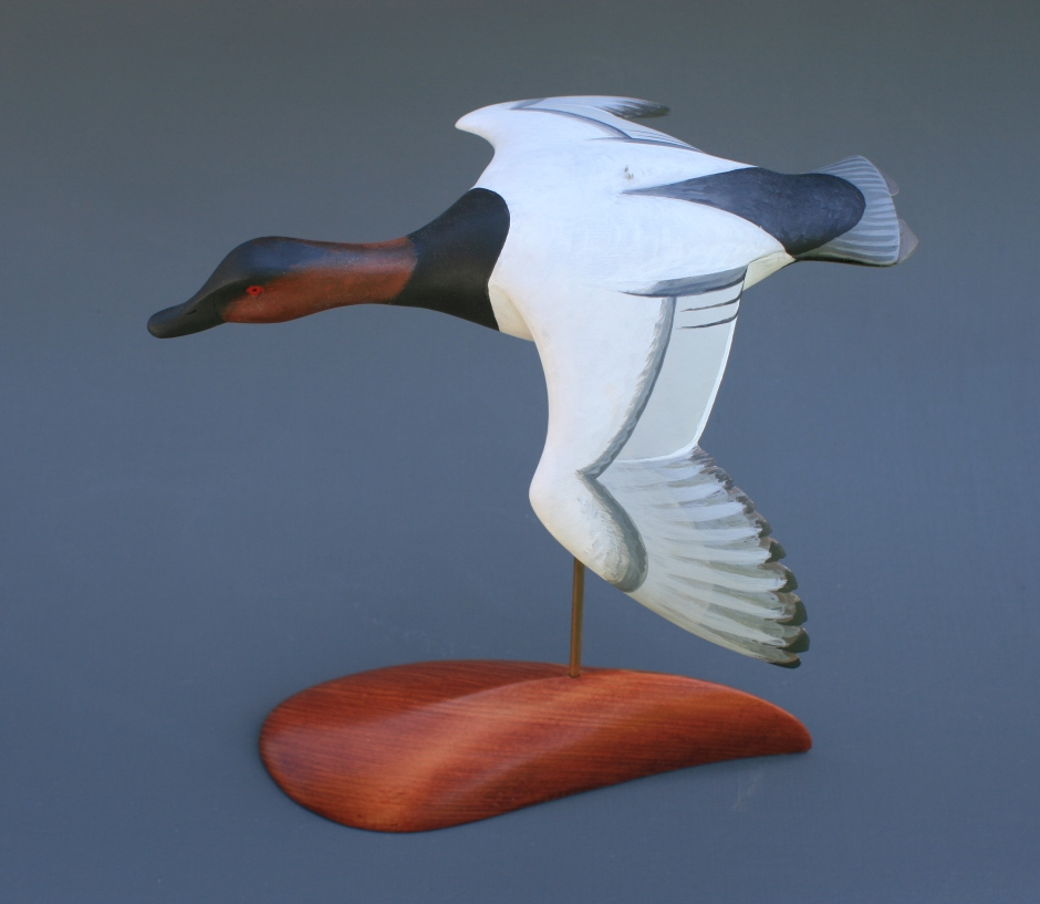 Canvasback Flyer A