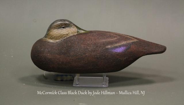 MBD10 Jode Hillman A