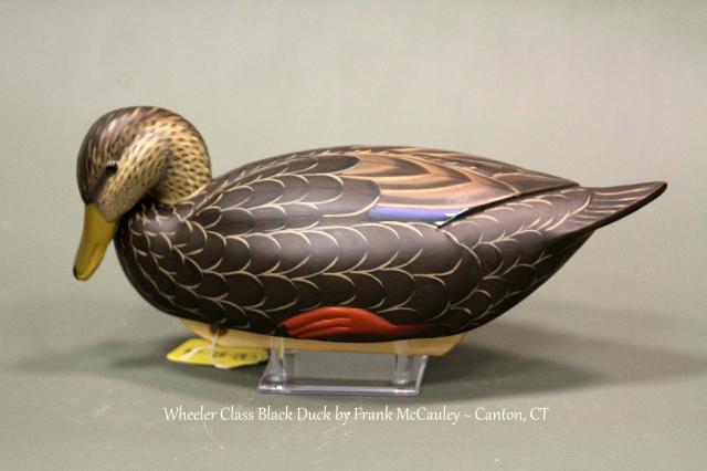 WBD04 Frank McCauley