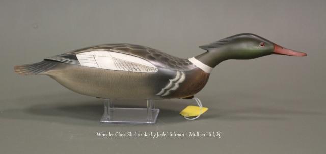 WSh02 Jode Hillman