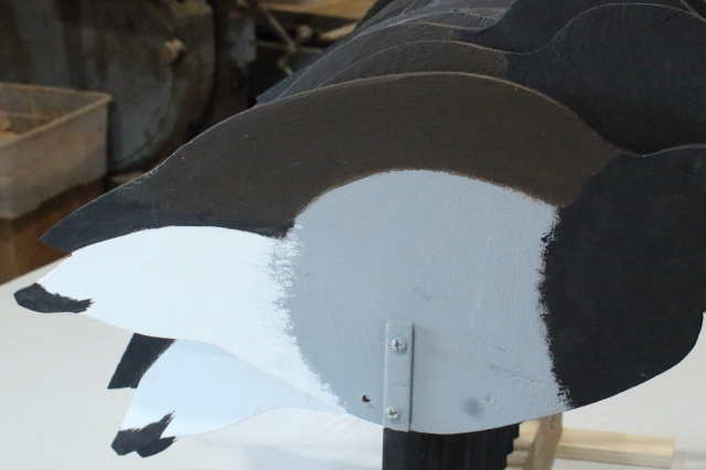 Brant 17 - Brown on back closeup